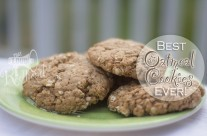 Best Oatmeal Cookies EVER!!